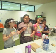 Ice Cream in a Bag Workshop